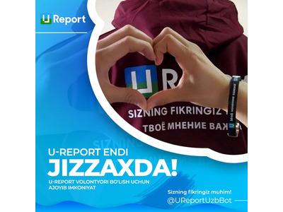 Xalqaro U-Reportda volontyorlik